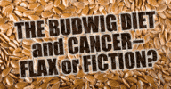 Budwig Diet and Cancer Flax or Fiction